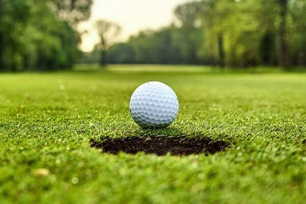 Golfresans detaljer